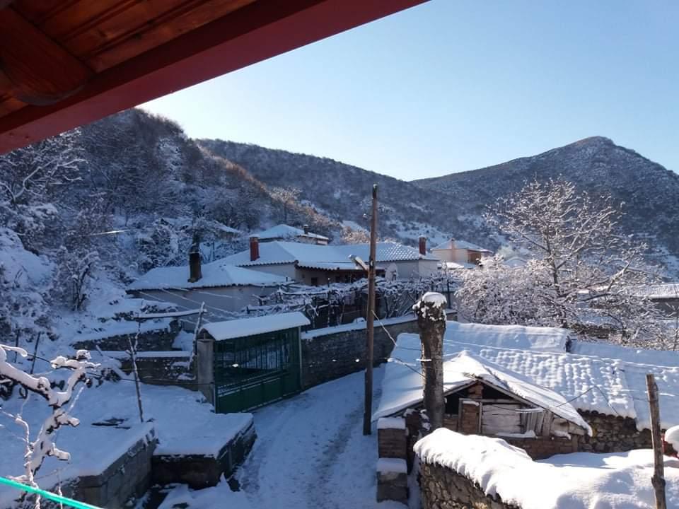 Buzeliqenas covered in snow. Photo credit @ACEG